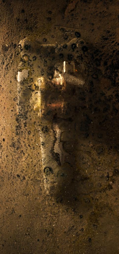 walter-crump-photography-still-life
